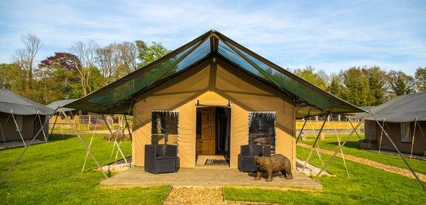 Port Lympne Reserve - Bear Lodge